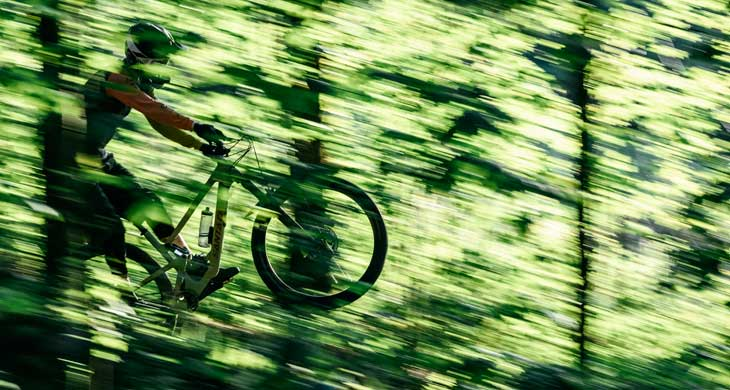 Freeride & Downhill
